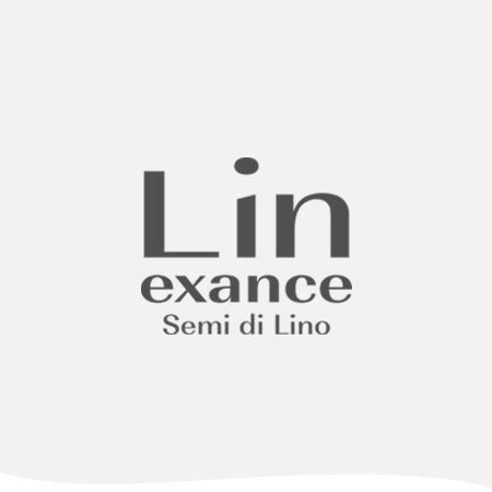 LIN EXANCE